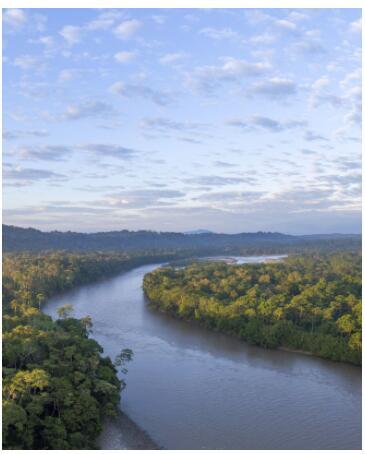 Amazon and Galapagos 2