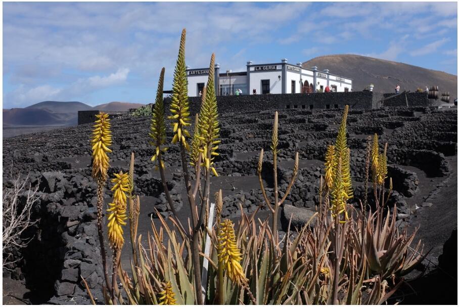 Sights in Lanzarote