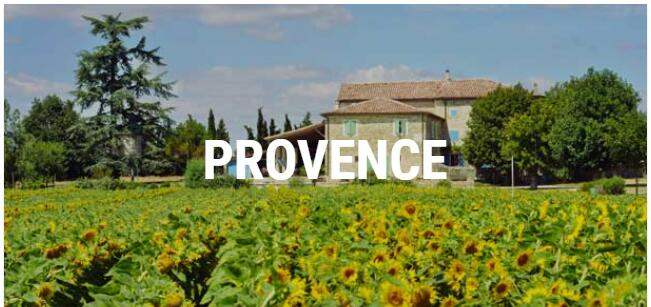Sun and Wine in Provence